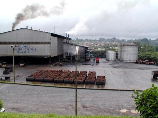 Palm_oil_factory_cote_d_Ivoire.jpg